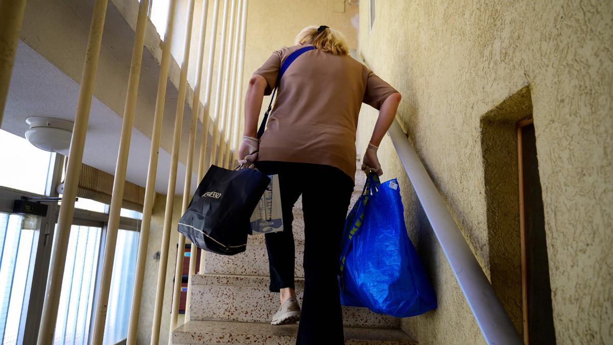 ingreso-minimo-vital:-que-es,-como-se-solicita-y-quien-puede-cobrarlo