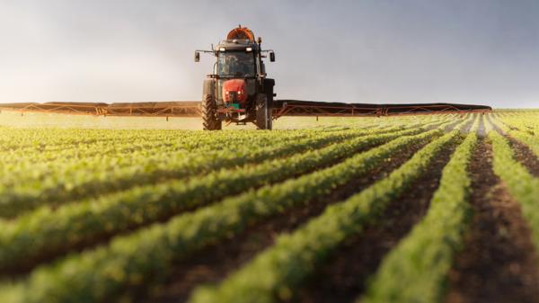 La Diputación de Bizkaia financiará con 85.000 euros la actividad de las asociaciones de personas productoras del sector agrícola