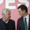 El Senado acuerda no investigar la relación de Felipe González y los GAL
