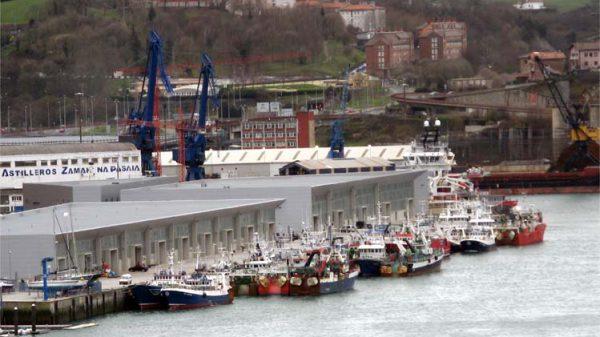 Primer positivo por COVID-19de un tripulante en la flota de bajura de Gipuzkoa